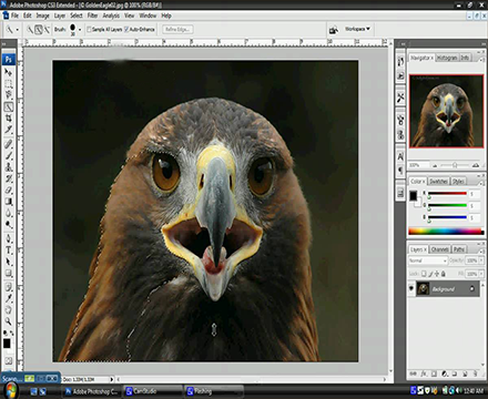 Adobe Photoshop CS3 Extended 30 days trial version for Windows