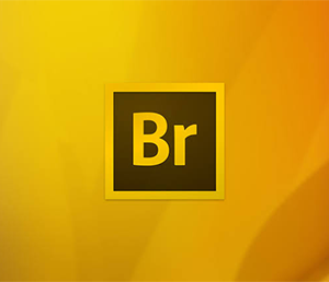 Download Adobe Bridge CC 2015